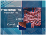 Caecal Templates For Powerpoint