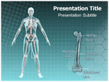 Epiphyseal Templates For Powerpoint