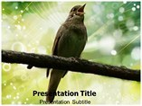 Nightingale powerpoint template