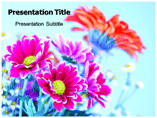 Flowers Templates For Powerpoint