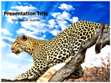 leopard Templates For Powerpoint