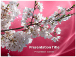 Cherry blossom Templates For Powerpoint