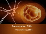 Stem cells Templates For Powerpoint