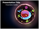 Cell Structure Templates For Powerpoint