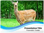 Animal Rights US Templates For Powerpoint
