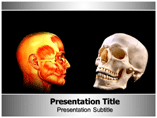 anthropology Templates For Powerpoint