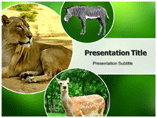 Zoo Animals Templates For Powerpoint