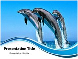 Dolphin Templates For Powerpoint