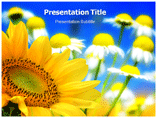 Flower Background Templates For Powerpoint