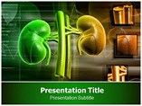 Kidney Transplant  PowerPoint Template