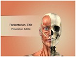 Face anatomy Templates For Powerpoint