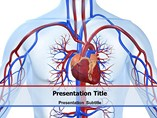 Cardiovascular Templates For Powerpoint