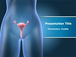 Female Reproductive - PPT Templates
