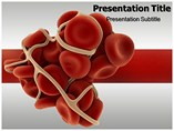 Coagulation Cascade Templates For Powerpoint