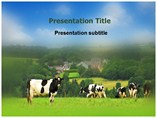 Animal Husbandry Template PowerPoint