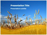 Wheat Plant Templates For Powerpoint