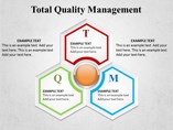 Total Quality Management Powerpoint Template