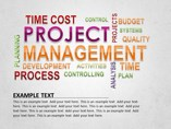 Project Management Diagram Powerpoint Template
