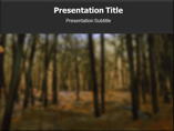 Falling Autumn Leaves Powerpoint Template