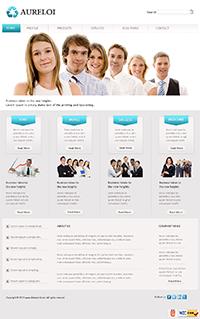 Professional Web