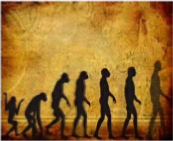 Evolution Images