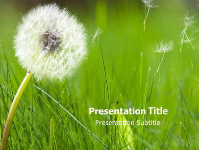 Allergy Rescue Powerpoint Template