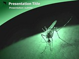 Malaria Symptoms Templates For Powerpoint